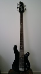 Fernandes Gravity 5X 5-String Electric Bass